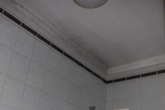 condensa soffitto bagno